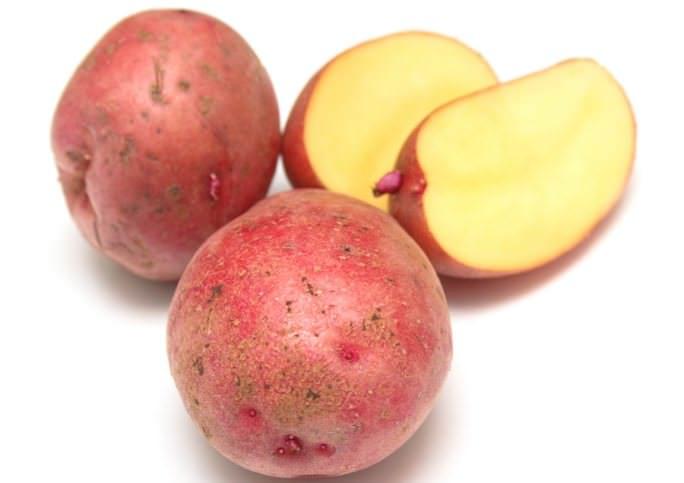 Картофель «Краса» весьма продуктивен и востребован у огородников