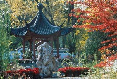 Сад в китайском стиле