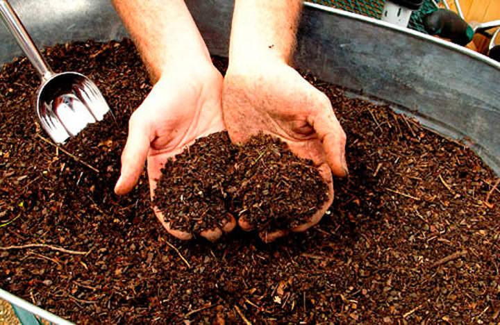 Процесс внесения помета под деревья и овощные культуры серьезно отличается, а потому будьте внимательны при использовании подобных подкормок