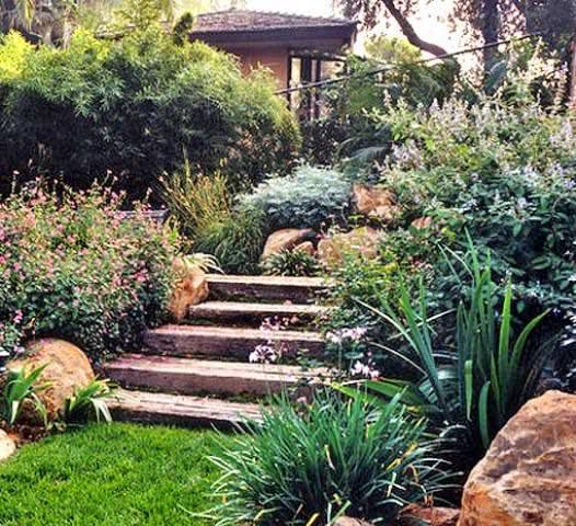 В ландшафтном дизайне часто используются ступени, которые являются переходами между разными рельефными зонами