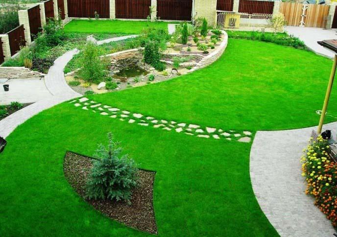 Натуральный газон представляет собой рассаду из специальных видов травы