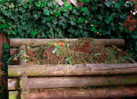 Определить ботву с грядки можно в компост или специальную яму