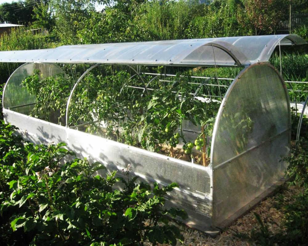 Парник «бабочка»: дешево, надежно и практично