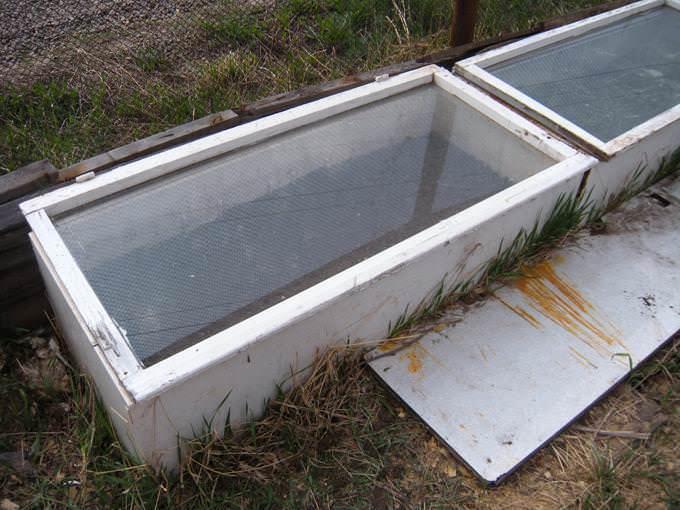 Парник для выращивания рассады из подручных средств (старые холодильники и окна)