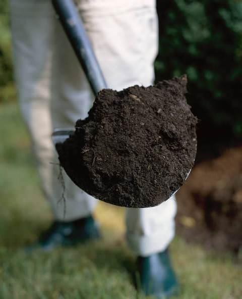 Существуют различные виды повышения плодородности почв: использование червей, микроорганизмов, смешанные посадки, внесение органических удобрений