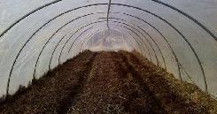 Работы в тепличных конструкциях заключаются не только в выращивании рассады, но и в подготовке почвы