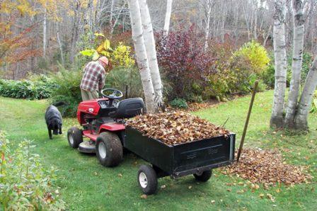 Мульчирование почвы в саду в осенний период