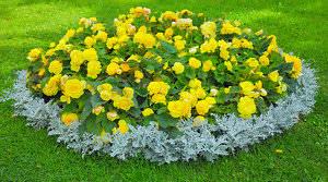 Подбирая различные растения, комбинируя их, можно создать практически бесконечное количество вариаций простой, но очень эффектной клумбы