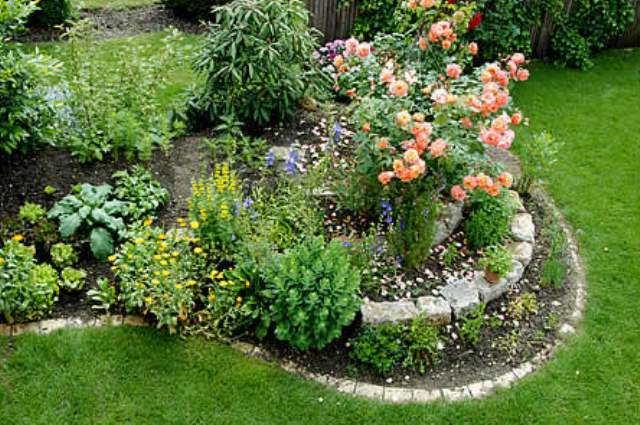 Наиболее декоративный вид можно получить, добившись гармоничного сочетания однолетних и многолетних растений