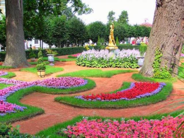 Стоит отметить, что выращивание цветов через рассаду значительно ускоряет сроки их цветения