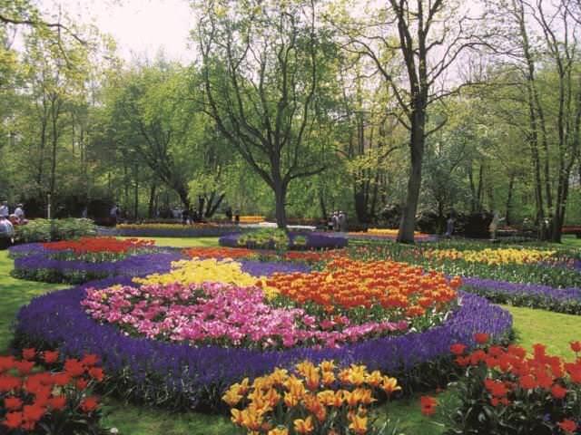 Устройство клумбы – дело на самом деле не такое быстрое и легкое: тут нужно учитывать разные нюансы (выбор растений, особенности их цветения, сочетание цветов, схемы оформления и многое другое)
