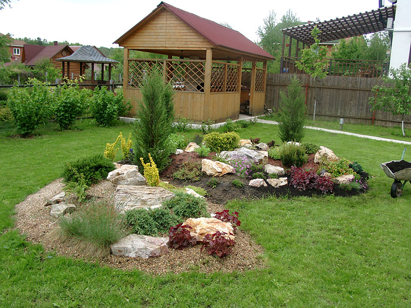 При создании рокария используются изначально низкорослые, а также карликовые виды растений