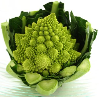 Романеско – гибрид цветной капусты и брокколи. Цвет культуры – светло-зеленый