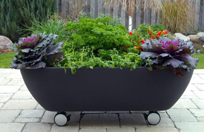 Из ванны получится отличный вазон для цветов