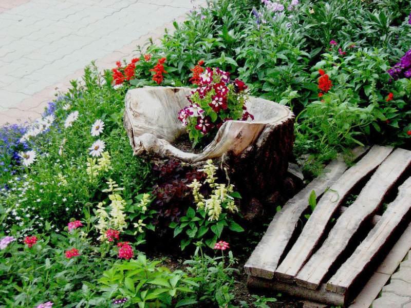 Максимально работайте со стилем, и в каком бы месте вы не решили расположить оригинальный сад корней, постарайтесь сделать это гармонично и ненавязчиво