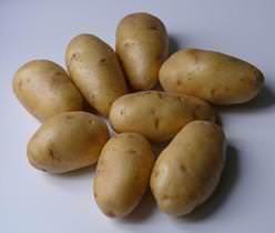 Картофель «Импала» предназначен для получения урожая дважды за один сезон