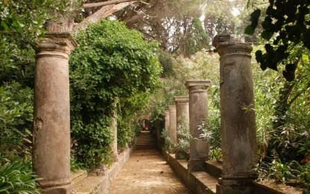 Что расположить вдоль аллеи: от растений до архитектуры