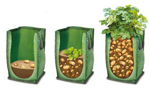Технология посадки картофеля в мешки очень проста