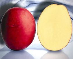 Картофель «Романце» относится к категории сортов столового назначения