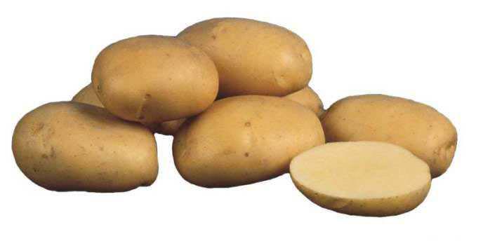 Картофель «Чародей» обладает отличными вкусовыми характеристиками