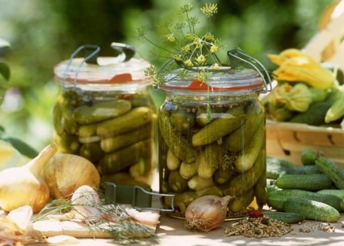 Прекрасные вкусовые качества огурца «Паратунка f1» не теряются в засолке и мариновании