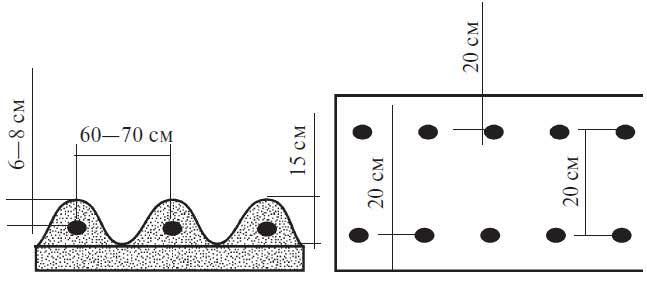 При посадке рекомендуется соблюдать стандартную рядовую схему 70х35