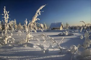Польза и вред снега на даче очевидны, а потому рекомендуем заранее подумать о том, как избавиться от снега в одном месте и оставить его в другом