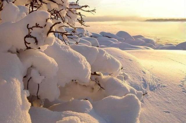 С приходом зимы многие дачники реже посещают дачу, но те из нас, кто все-таки выбирается сюда, не остаются разочарованными
