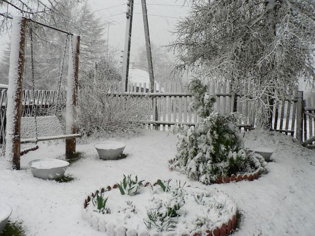 Нередко дачниками разных регионов наблюдалось аномальное количество осадков, когда снег не только заваливает все вокруг, но становится и причиной для многих беспокойств