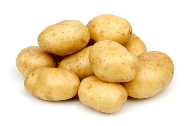 Картофель «Гала» востребован для выращивания в приусадебных хозяйствах