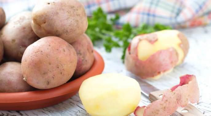 Картофель «Леди» очень востребован на предприятиях, специализирующихся на переработке картофеля на чипсы