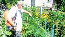 обработка, опрыскивание растений