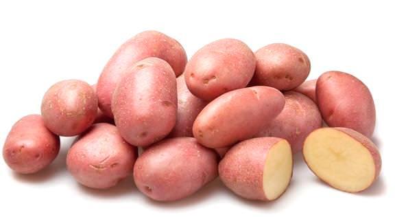 Картофель «Розана» характеризуется высокой урожайностью