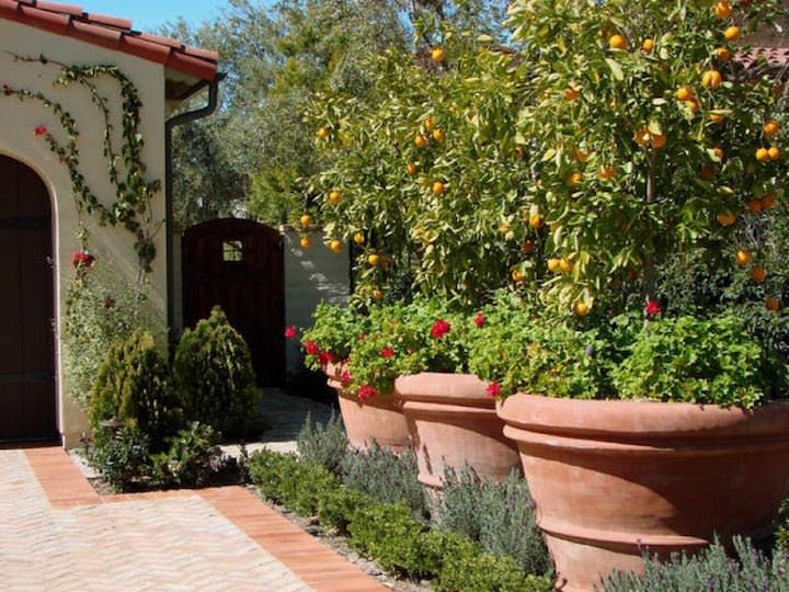Как обустроить сад в средиземноморском стиле