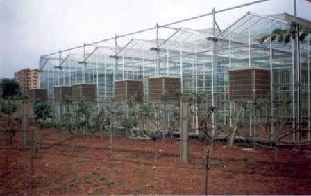 Каждый дачник должен правильно понимать температурные режимы для тех растений, которые выращиваются в теплице