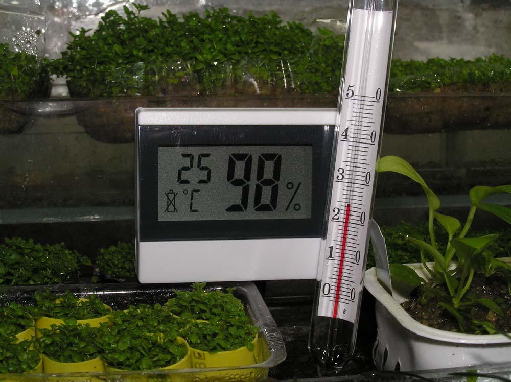 Правильное регулирование температуры в теплице, отдельно под каждую культуру, приводит к ожидаемому результату
