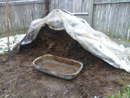 Осенью в теплице необходимо использовать только качественное и хорошо подготовленное удобрение