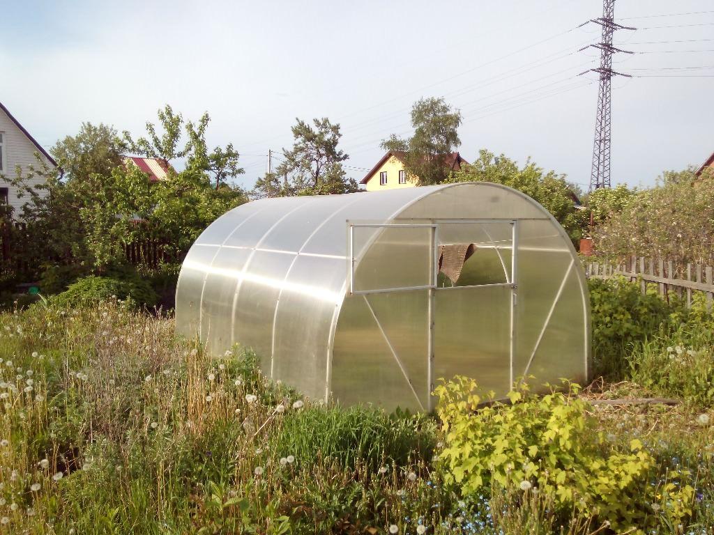 Теплица Сотка: практичная и долговечная конструкция для выращивания культур