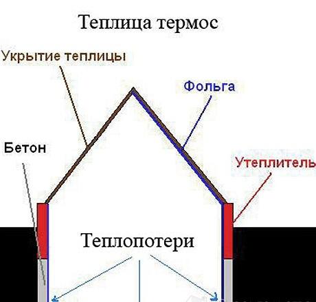 Теплица-термос, изобретенная Анатолием Патием, настолько практична и функциональна, что в ней можно выращивать даже цитрусовые