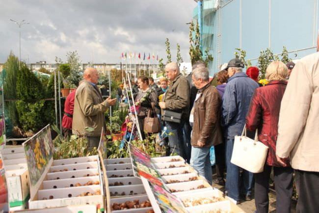 """Выставочный проект """"Дачный сезон"""" из года в год собирает только самых интересных и ярких участников флористической индустрии"""