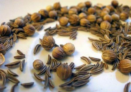 Плоды тмина популярны в хлебопечении