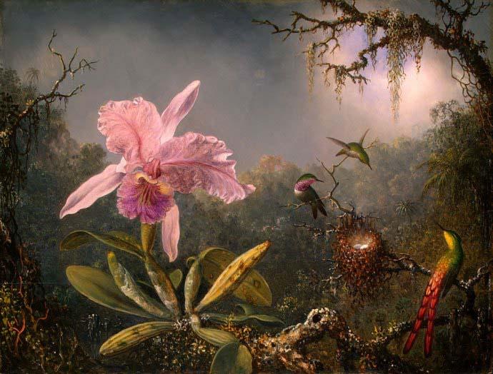 Орхидеи дошли до наших времён на рисунках древних китайских художников