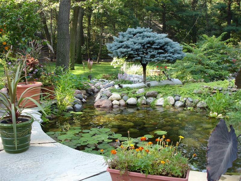 Очистка водоема весной: полезные советы и рекомендации