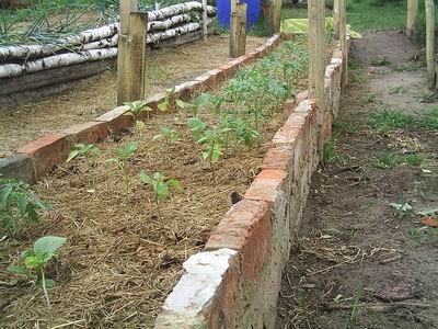 От преимуществ высоких огородов на даче переходим к строительству своими руками