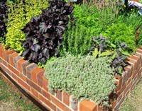 Формирование высоких декоративных грядок и огородов из кирпича