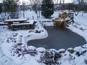 Перед зимними холодами декоративный водоем нуждается в особенном уходе