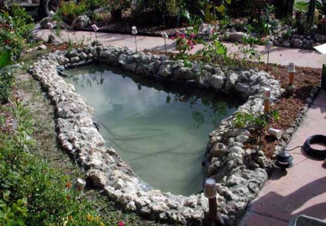 Зеленые насаждения, которые растут по краям водоема или в болотистой местности, нужно аккуратно срезать по уровню воды