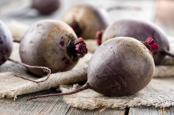 В октябре можно заняться сбором свёклы и прочих корнеплодов