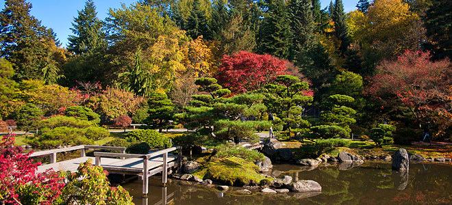 Сад в японском стиле выглядит привлекательно в течение всего года