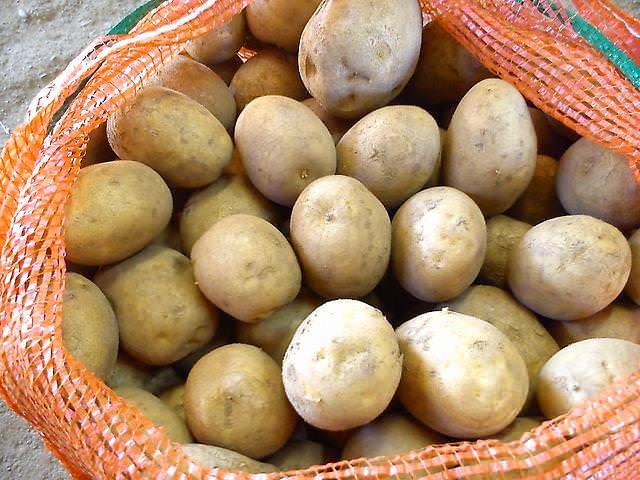 Срок хранения собранного урожая сорта «Зекура» очень длительный и с минимальным количеством потерь